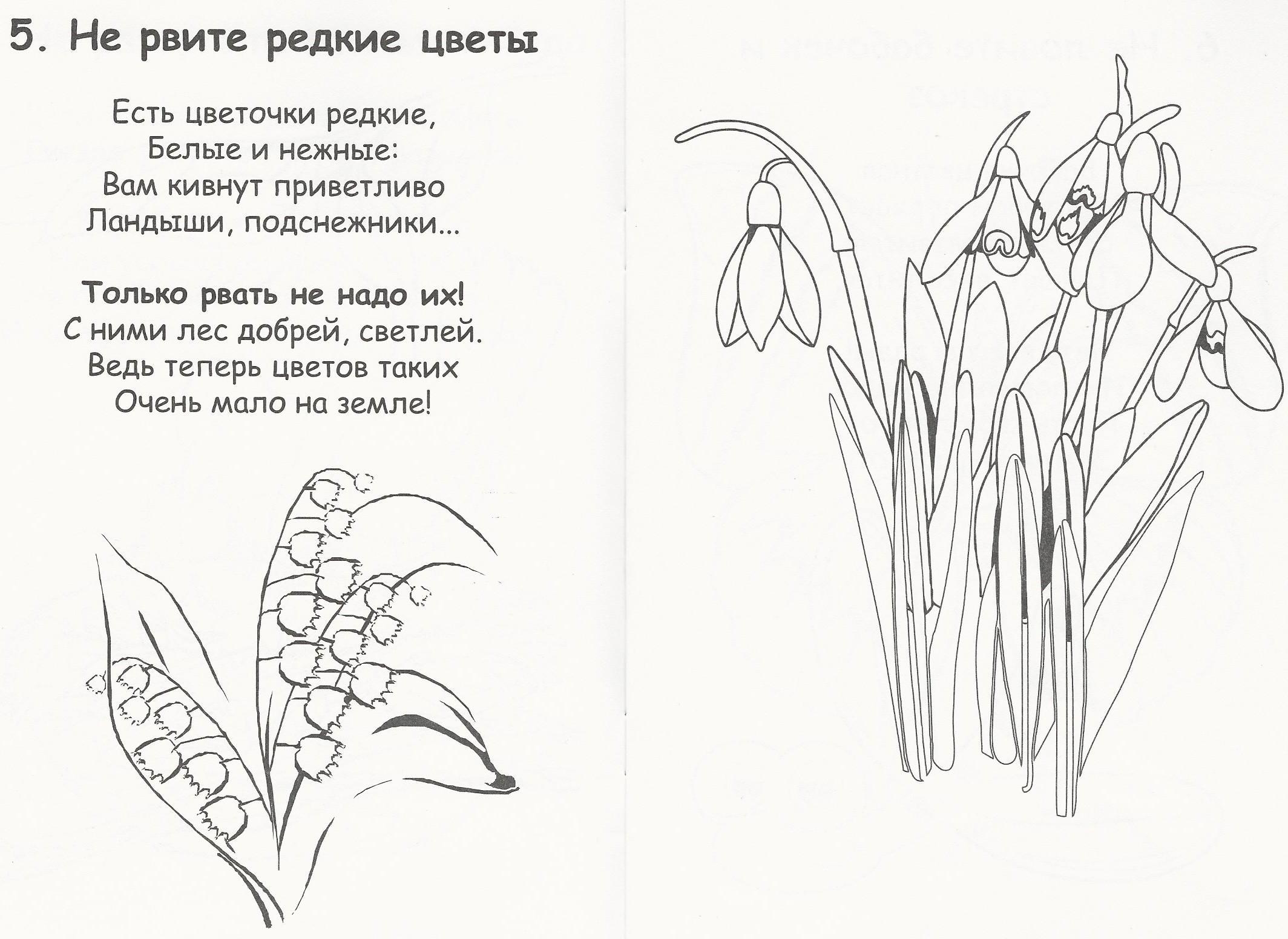 Не смейте, люди, рвать цветы! (Петр Летуновский) / Стихи. ру 17